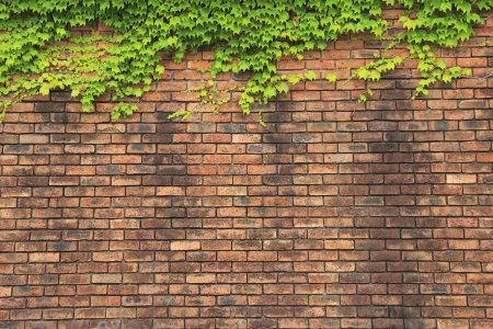Brick wall that is old (next to Akashi town riverside park) photo