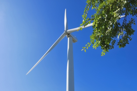 Wind-power generation photo