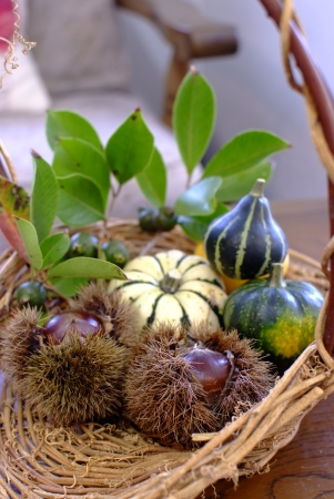 Pumpkins and chestnuts in a basket photo