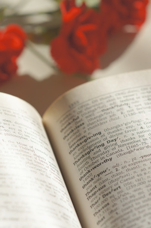 Red Carnation beside a dictionary photo
