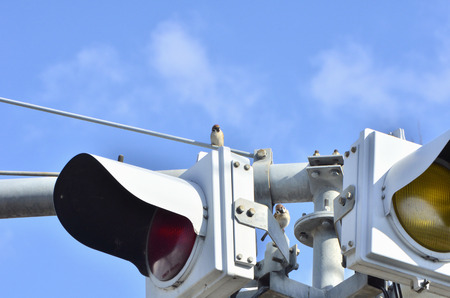 Two sparrows perched on traffic lights photo