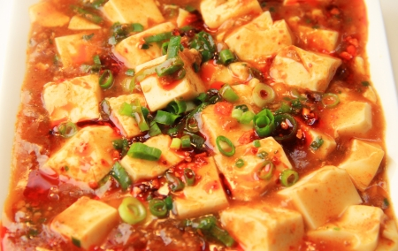 Mapo Tofu photo