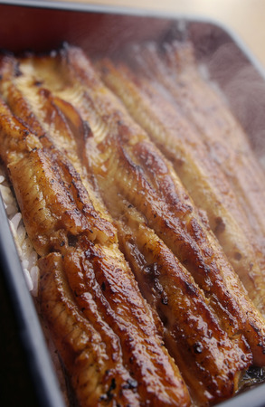 Broiled eel on rice in box,close up photo