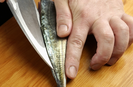 cutting horse: Chef cutting horse mackerel,close up
