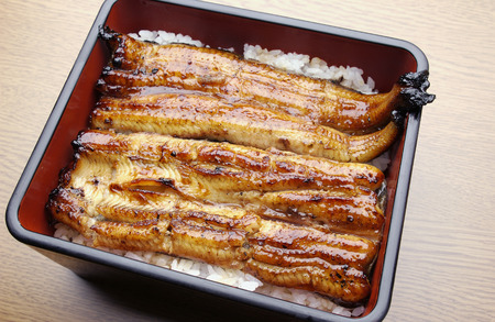 Broiled eel on rice in box photo