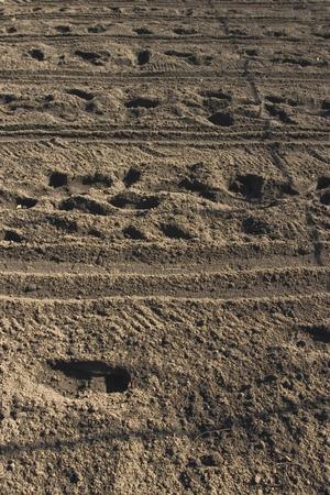 plowed field: Plowed field Stock Photo