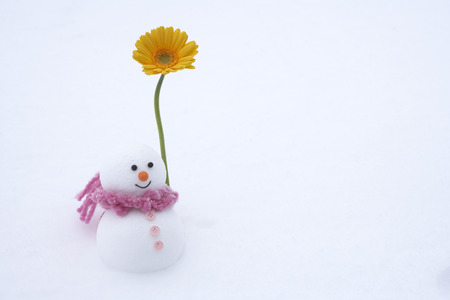 female likeness: Snowman with gerbera daisy Stock Photo