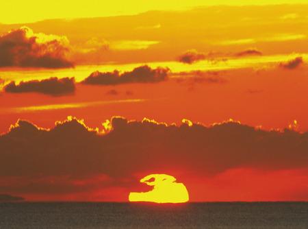 honshu: Sunrise,Kanagawa Prefecture,Honshu,Japan