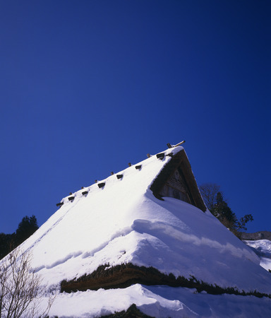 thatched roof: Snow on Thatched Roof Stock Photo