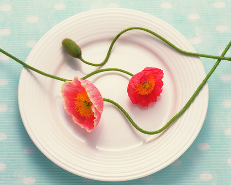 Poppies on a plate photo