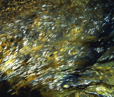 flowing water: Flowing water in river