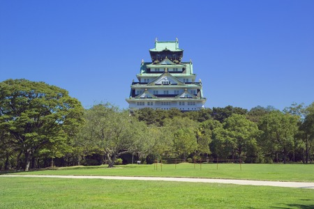osaka castle: Field of Trees and Osaka Castle. Osaka Prefecture,Japan