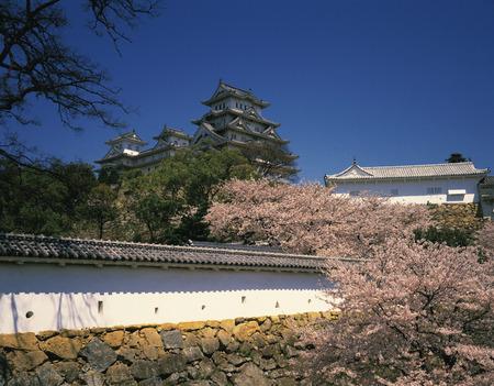 honshu: Himeji Castle,Hyogo Prefecture,Honshu,Japan