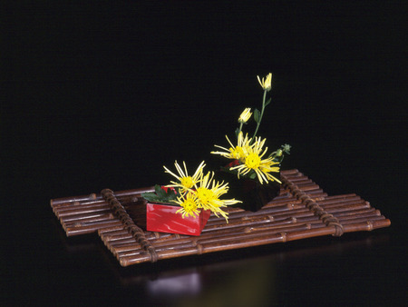 lacquered: Yellow flowers in Japanese lacquered boxes on wooden tray Stock Photo