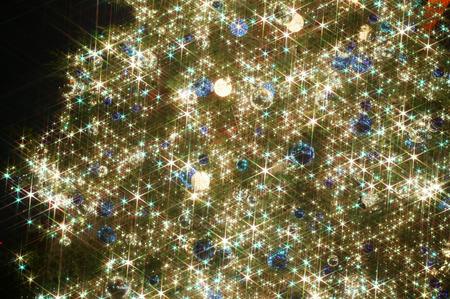 lens flare: Albero di Natale illuminato, sfondo nero, lens flare, l'esposizione a lungo