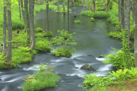 fukushima: Nagase river,Fukushima Prefecture,Japan