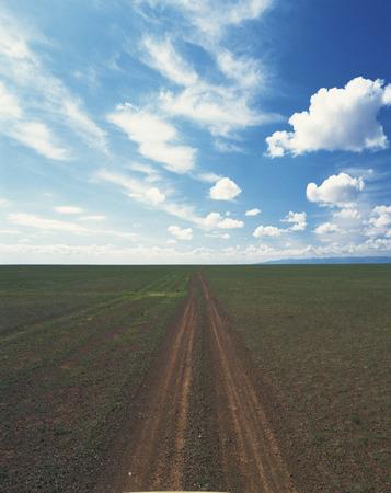 single track: Single Track Through Field Stock Photo