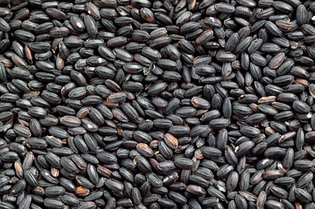black rice: Black rice,close up,full frame Stock Photo