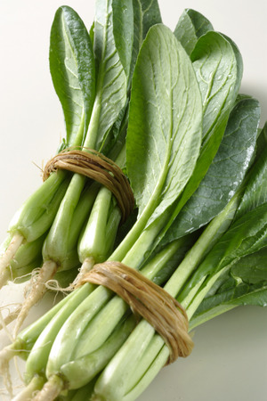 brassica: Brassica campestris Stock Photo