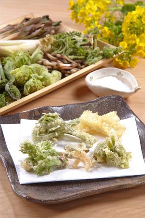野草: 野草の天ぷら
