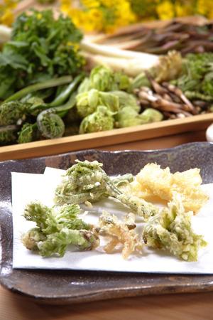 wild grass: Hierba salvaje tempura