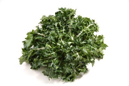 rapa: Brassica rapa vegetable