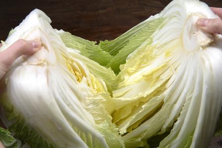 brassica: Brassica pekinensis