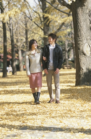 fold ones arms: Japanese couple walking arm in arm through a row of gingko trees Stock Photo