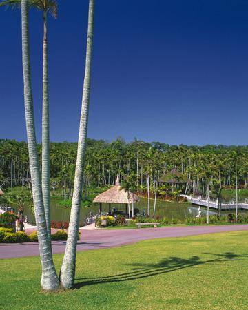 botanical gardens: Botanical Gardens in Okinawa