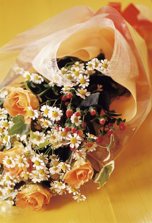german chamomile: Bouquet Stock Photo