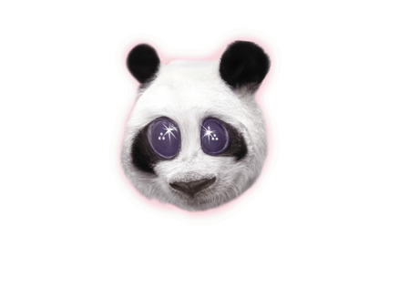 one panda: Bright Eyed Panda, CG