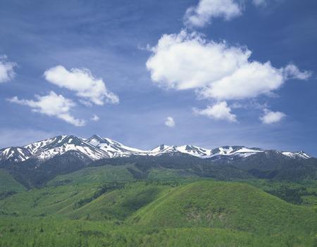 early summer: Early summer at Mt. Norikura Stock Photo