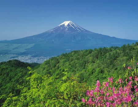 Early Summer Mount Fuji Stock Photo