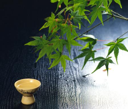sake: Sake y el arce Foto de archivo