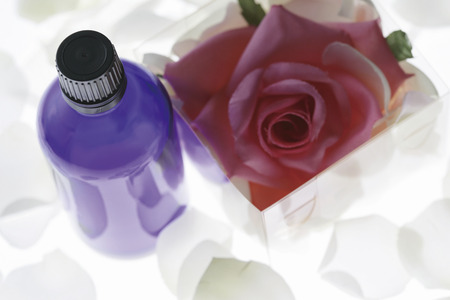 blotter: Rose flowers and a water blotter