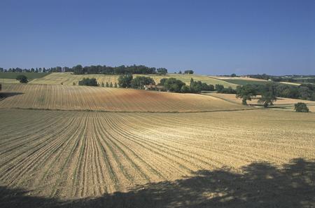 gascony: Landscape of the Gascony region