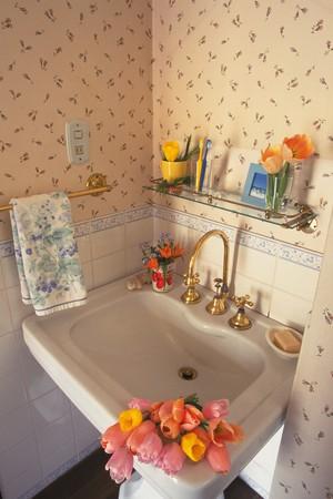 washroom: Ba�o