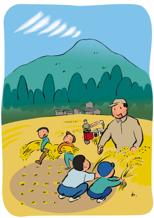 harvesting rice: Harvesting illustration
