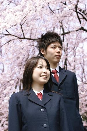 upper school: Boys and Girls in School Uniform with Cherry Blossom Tree