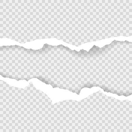 torn paper edges, Background seamless horizontally texture, vector isolated in space for advertising, banner of web page, print concept of illustration Illustration