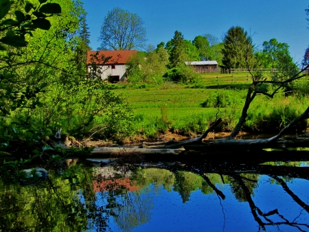 fallen: Rural farm with fishing hole and fallen tree across the water Stock Photo