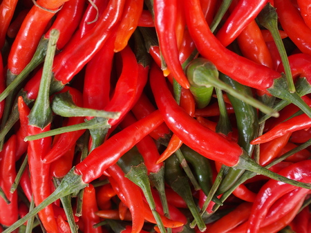 red chili close up