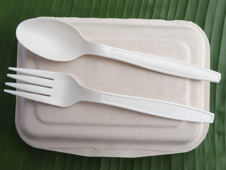 bioplastic spoon fork lunch box on banana leaf