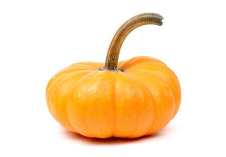 Miniature Pumpkin