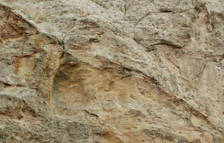 Limestone Rock Face for Background or Blending