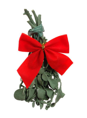 Real mistletoe with gold and red ribbon attached