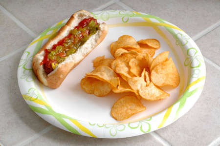 Hotdog and Chips on a Plate on the Counter