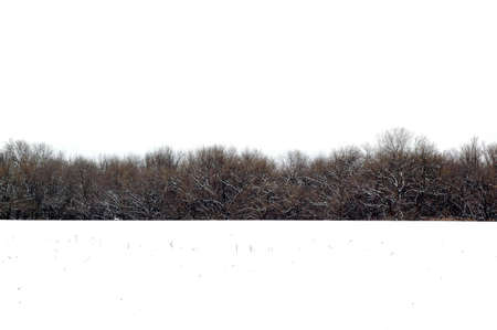 Photo of a farm field covered with snow and woods in the background Stock Photo