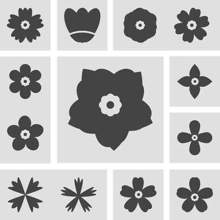 flowers icon vector design