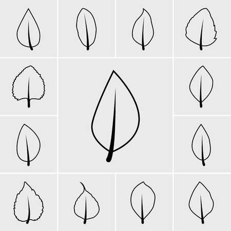 simple life: black Leaf icon vector set on gray background Illustration